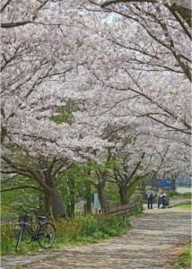 入選1春の一日石野久雄