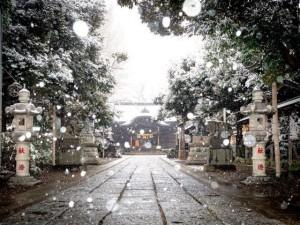 協議会賞1津田沼雪景色菊田神社横井真弓